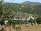 Cortijo Las Almendras - A typical Andalucian farmhouse set in miles of beautiful countryside